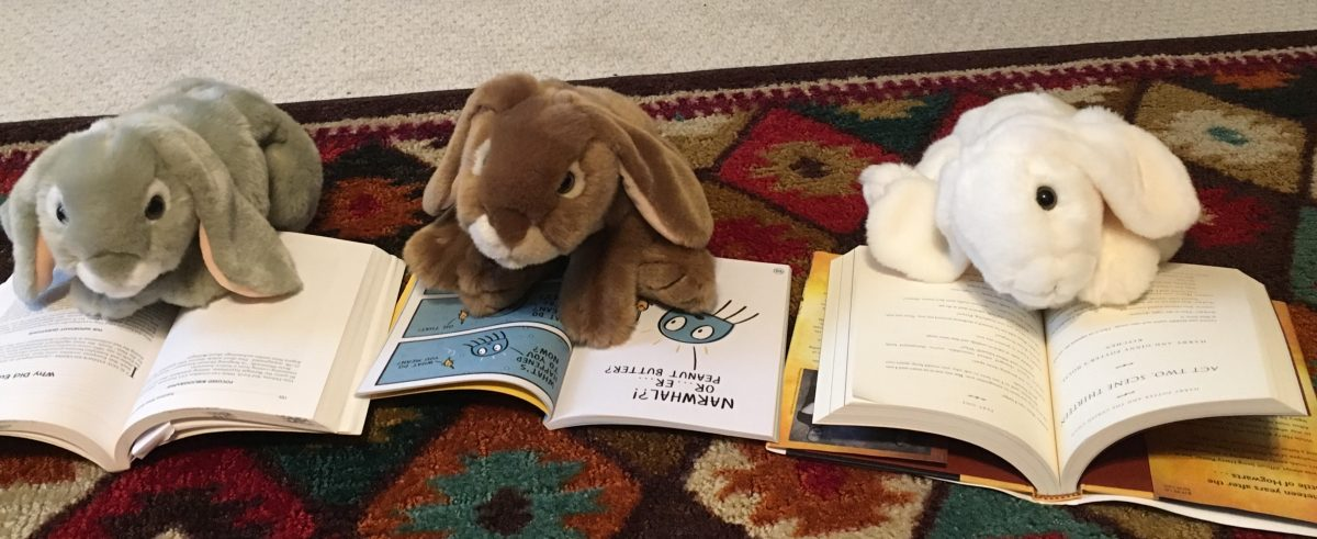 BookBunnies