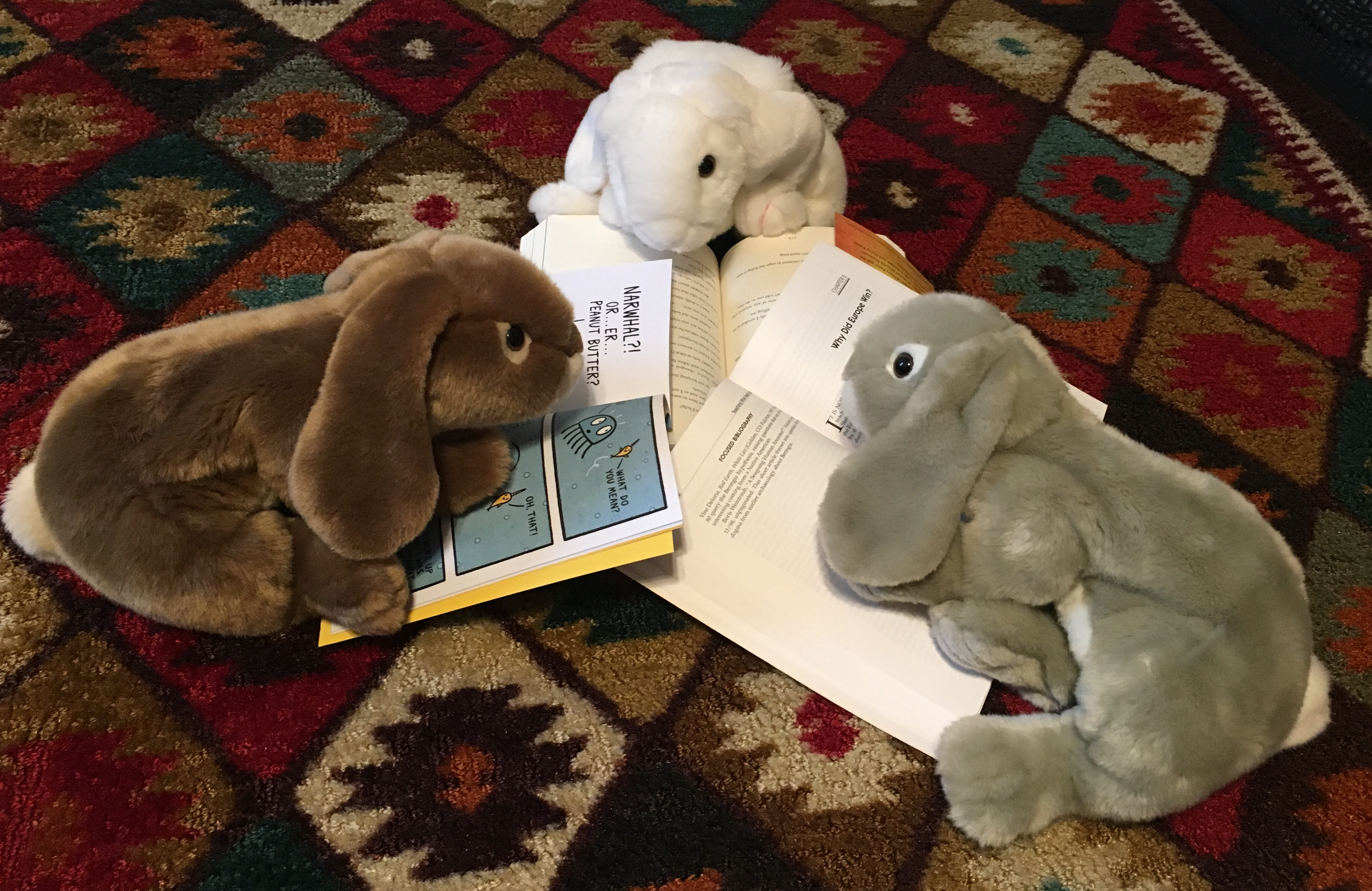 Sprinkles, Marshmallow, and Caramel eagerly reading their first books for the blog.