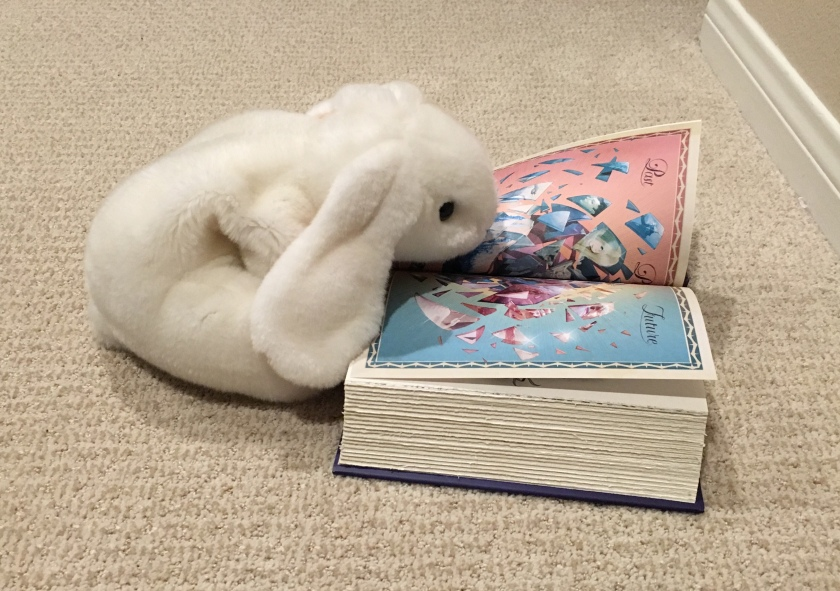 Marshmallow is studying the crystal of time.