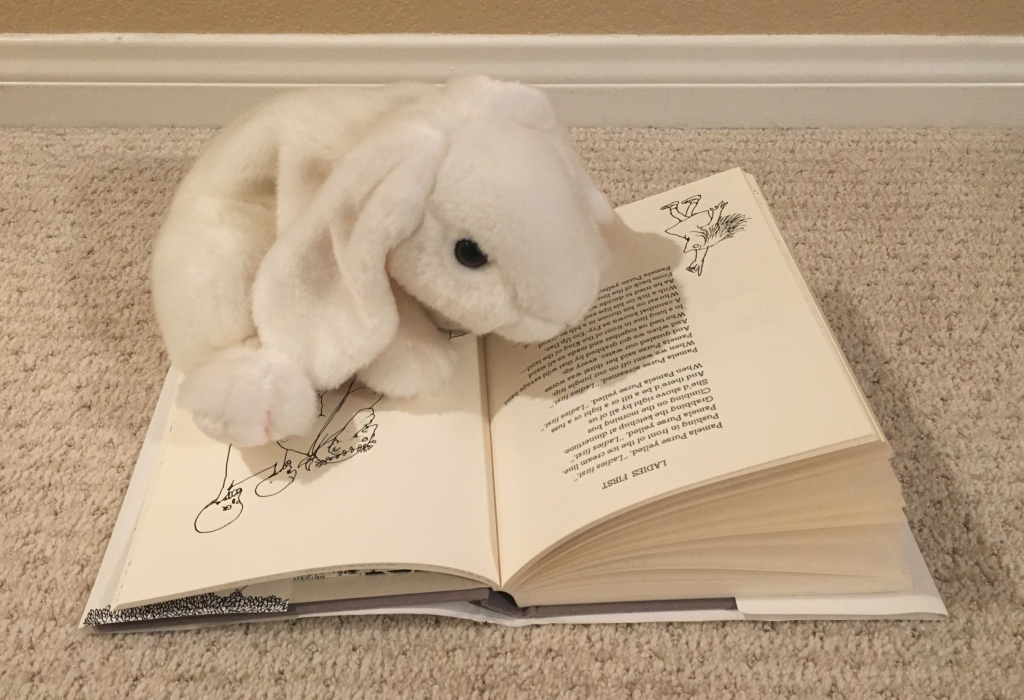 Marshmallow is reading Ladies First by Shel Silverstein in A Light in the Attic.