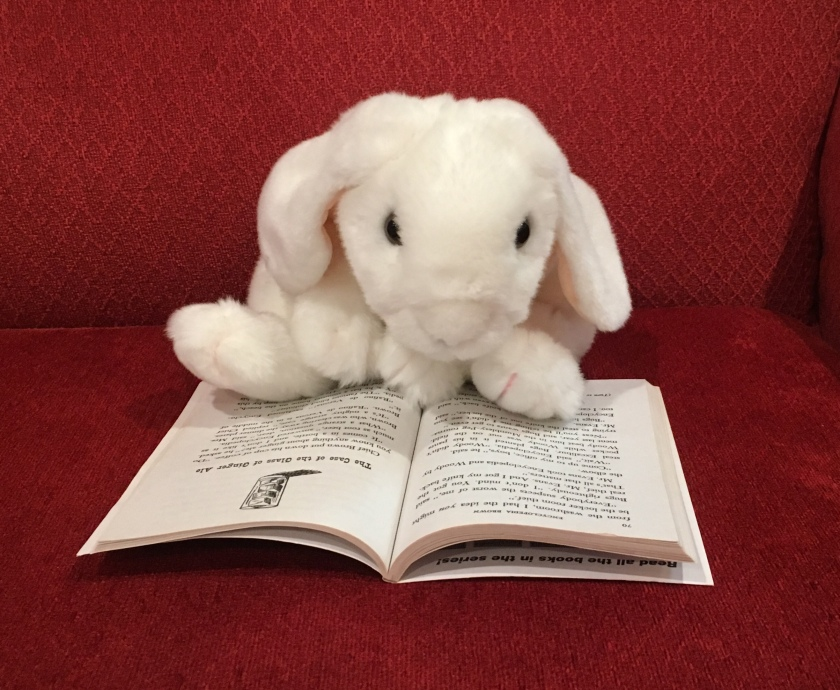 Marshmallow is reading her favorite Encyclopedia Brown story: The Case of the Glass of Ginger Ale.