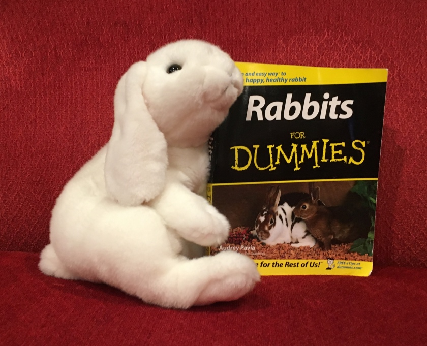 Marshmallow reviews Rabbits for Dummies by Audrey Pavia.