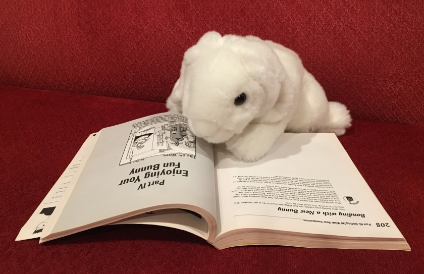 At the beginning of each part is a single comic. Marshmallow's favorite is the one starting Part IV.