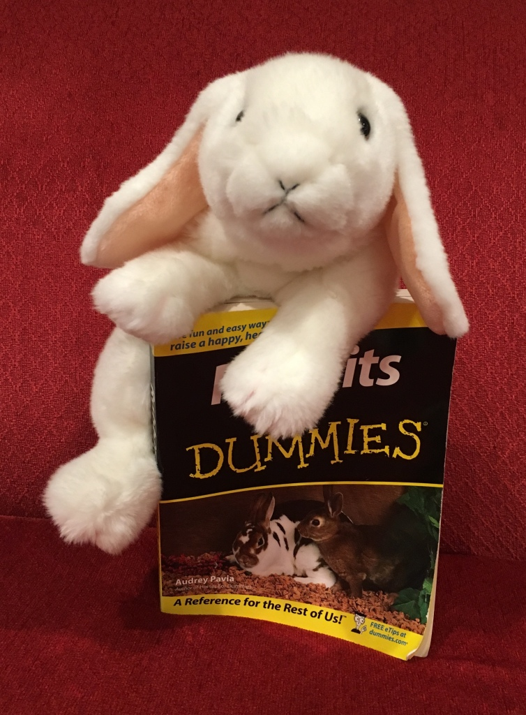 Marshmallow rates Rabbits for Dummies by Audrey Pavia 100%.