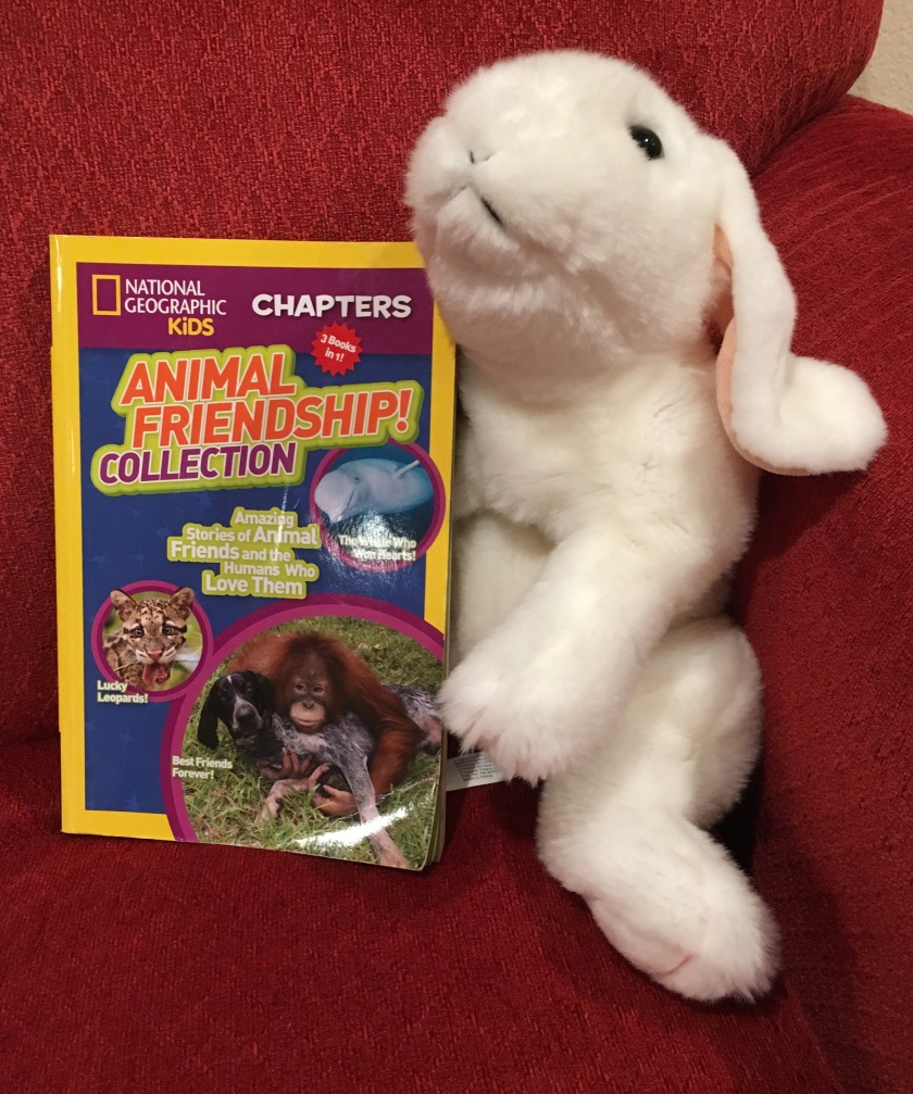 Marshmallow rates Animal Friendship! Collection, Amazing Stories of Animal Friends and the Humans Who Love Them by National Geographic Kids 100%.