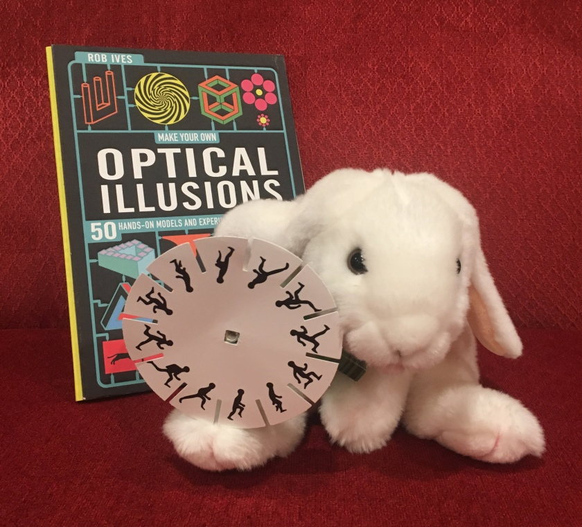 Marshmallow is proudly showing one of the optical illusion toys she made using the cutouts from Make Your Own Optical Illusions: 50 Hands-On Models and Experiment to Make and Do.