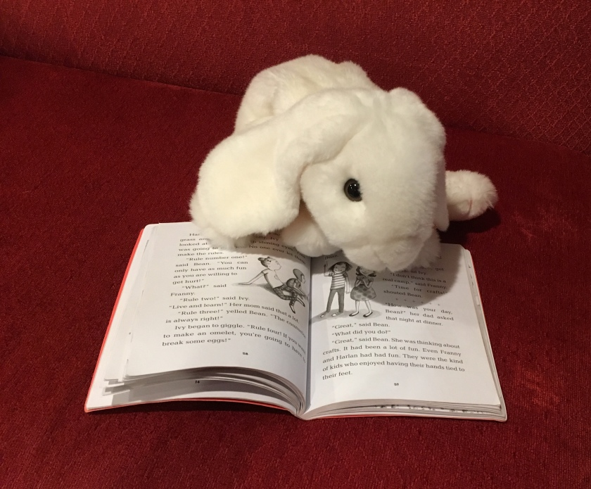 Marshmallow is pointing at the pages in Ivy and Bean Make the Rules where the two girls are listing the rules of their camp, Camp Flaming Arrow.