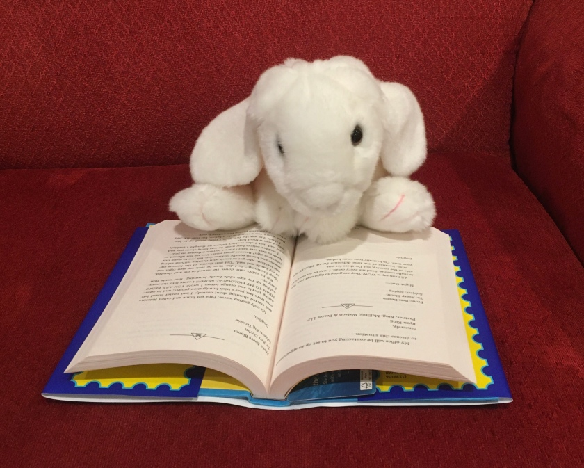Marshmallow is reading To Night Owl From Dogfish by Holly Goldberg Sloan and Meg Wolitzer.