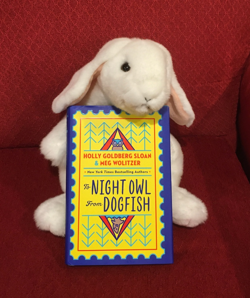 Marshmallow reviews To Night Owl From Dogfish by Holly Goldberg Sloan and Meg Wolitzer.