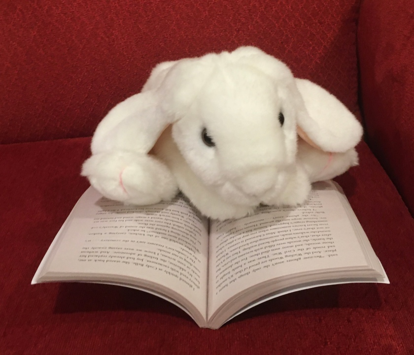 Marshmallow is reading The Key to Extraordinary by Natalie Lloyd.