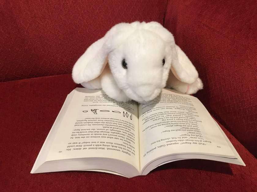 Marshmallow is reading You Have To Stop This by Pseudonymous Bosch (Book 5 of the Secret Series).