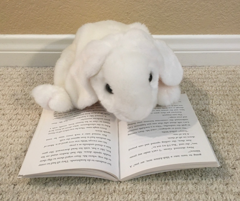 Marshmallow is reading Upside-Down Magic by Sarah Mlynowski, Lauren Myracle, and Emily Jenkins.