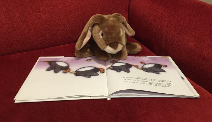 Caramel is looking at the page where Penguin Pete is trying to fly, in Penguin Pete by Marcus Pfister.