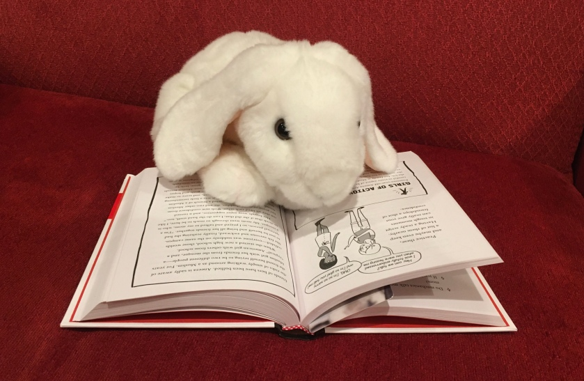 Marshmallow is reading The Confidence Code for Girls by Katty Kay and Claire Shipman.
