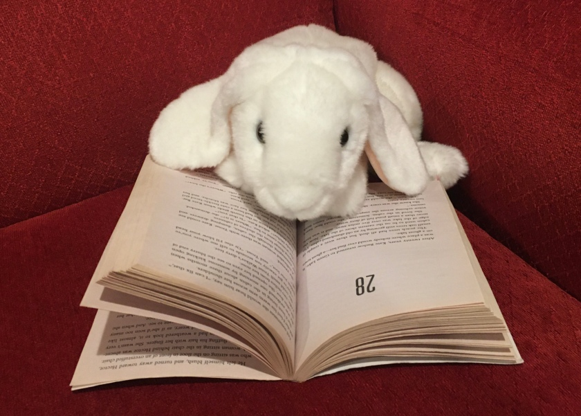 Marshmallow is reading Holes, by Louis Sachar.