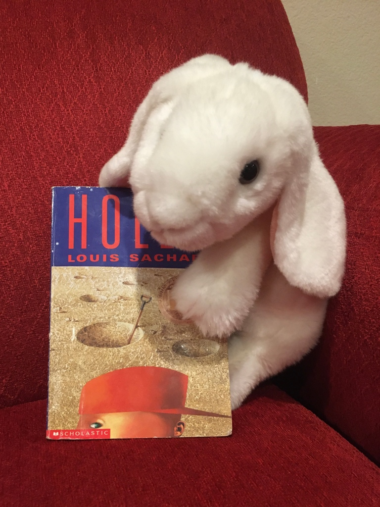 Marshmallow reviews Holes, by Louis Sachar.