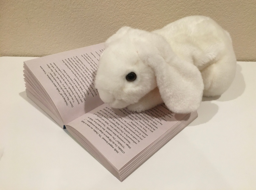 Marshmallow is reading Panda-monium by Stuart Gibbs, the fourth book in the FunJungle series.