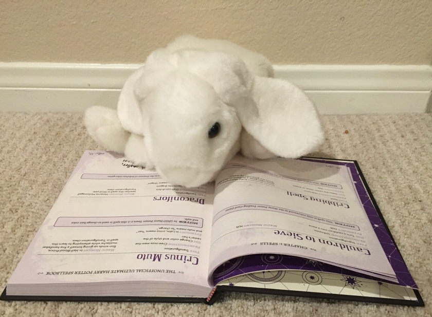 Marshmallow is reading her favorite spells in The Unofficial Ultimate Harry Potter Spellbook: A Complete Guide to Every Spell in the Wizarding World, by Media Lab Books.