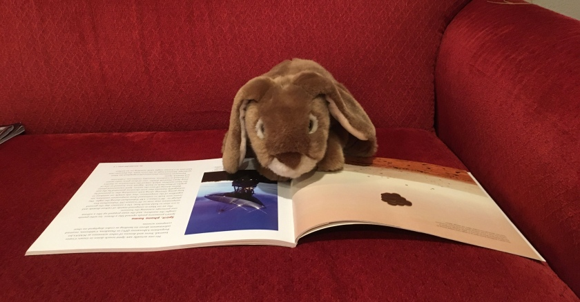 Caramel is reading Cars on Mars: Roving the Red Planet by Alexandra Siy.