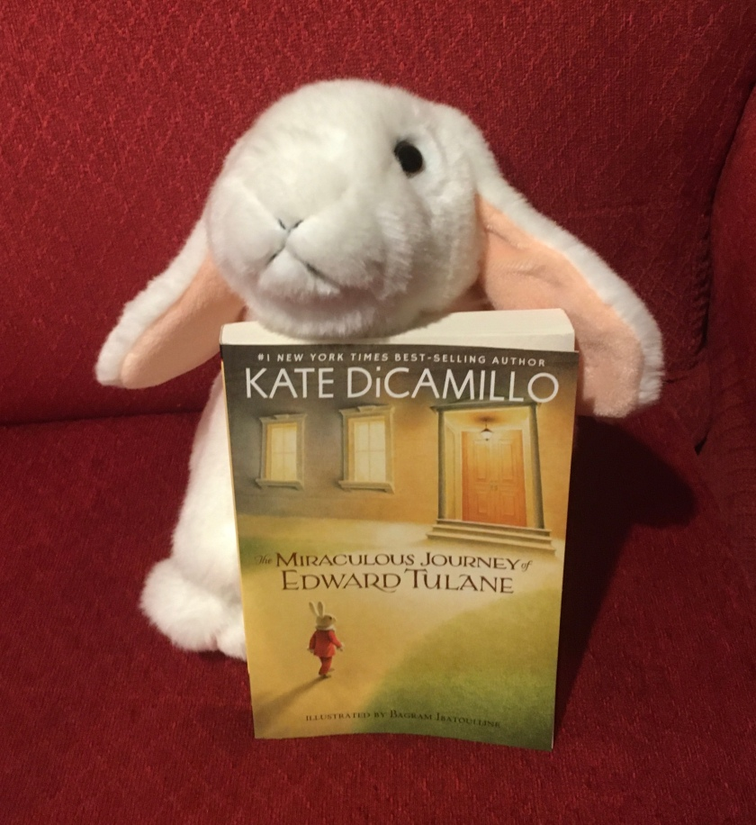 Marshmallow rates The Miraculous Journey of Edward Tulane by Kate DiCamillo 100%.