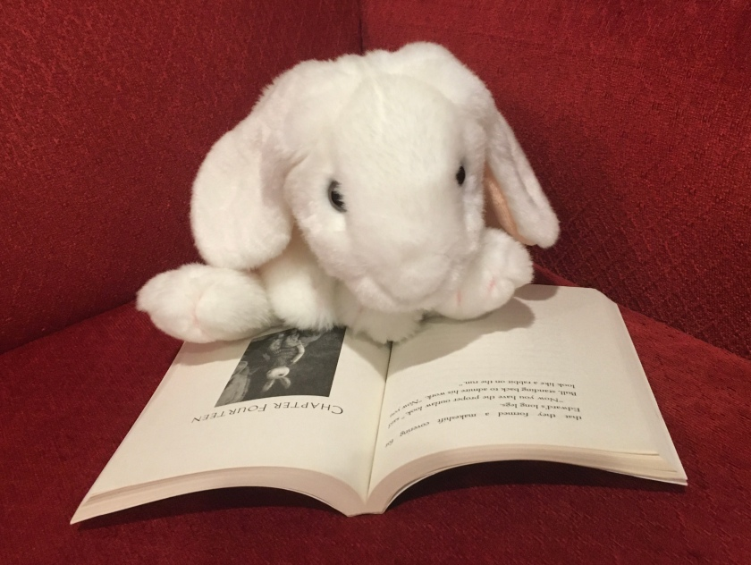 "Marshmallow is reading the part of Kate DiCamillo's The Miraculous Journey of Edward Tulane where Edward finally has ""the proper outlaw look""--now he finally looks ""like a rabbit on the run""."