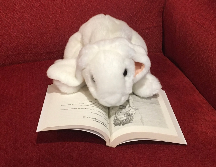 Marshmallow is reading Flora and Ulysses by Kate DiCamillo.