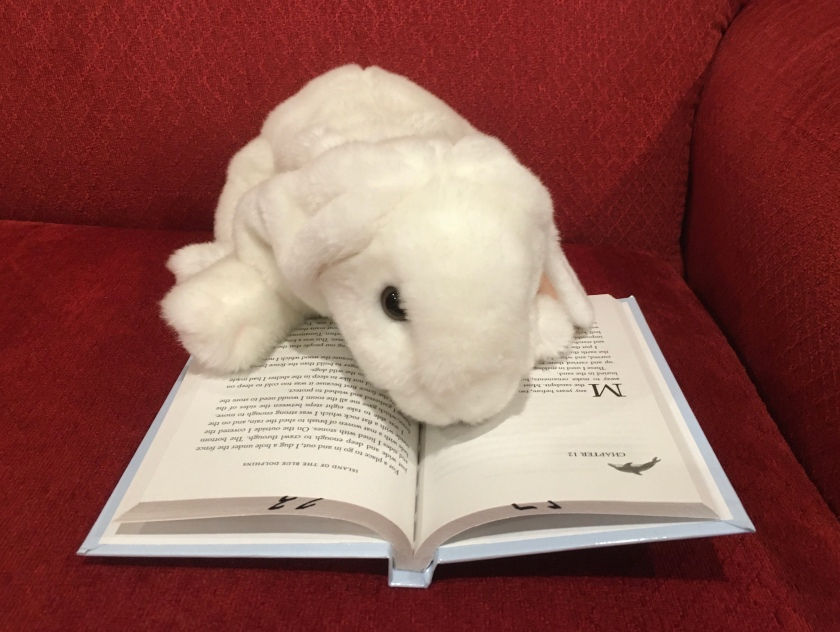 Marshmallow is reading Island of the Blue Dolphins by Scott O'Dell.