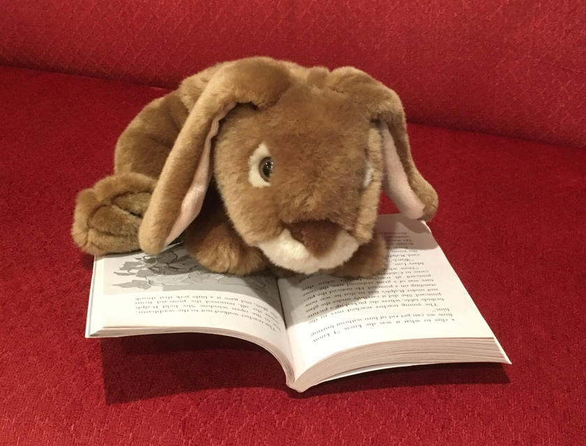 Caramel is reading The Mouse and the Motorcycle by Beverly Cleary.