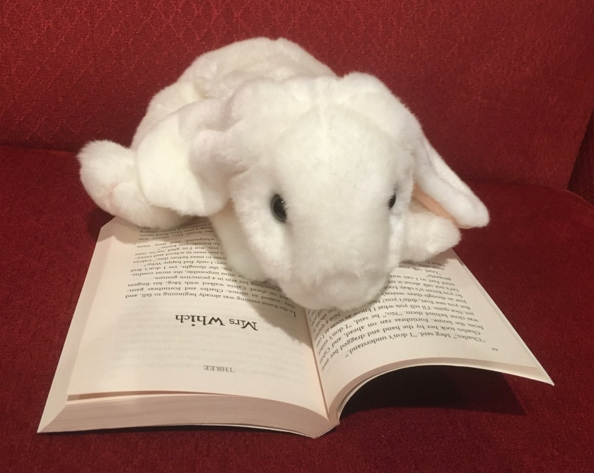 Marshmallow is reading A Wrinkle in Time by Madeleine L'Engle.