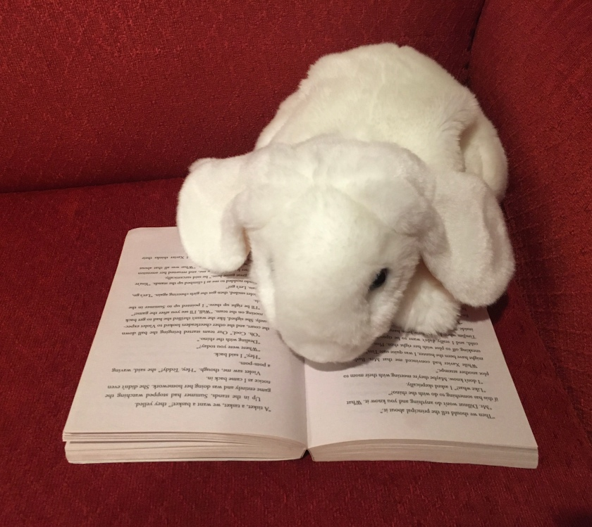Marshmallow is reading Big Game by Stuart Gibbs.