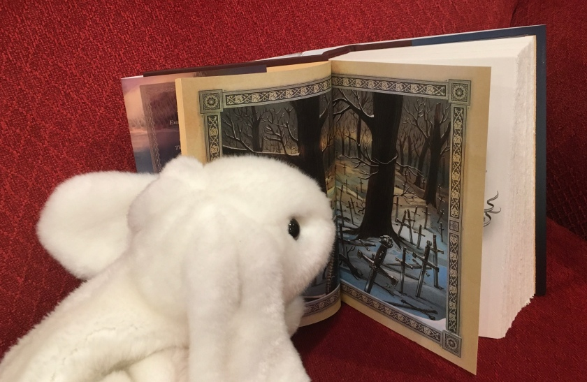 Marshmallow is looking at all the Excaliburs in One True King, the sixth and last book of Soman Chainani's School For Good and Evil series.