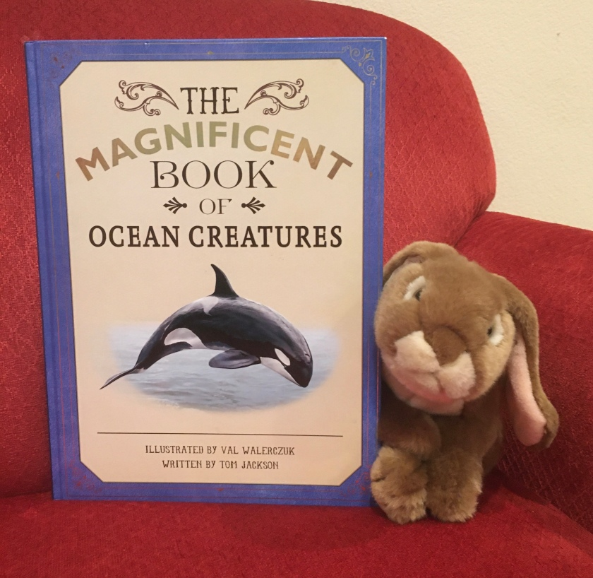 Caramel reviews The Magnificent Book of Ocean Creatures by Val Walerczuk and Tom Jackson.