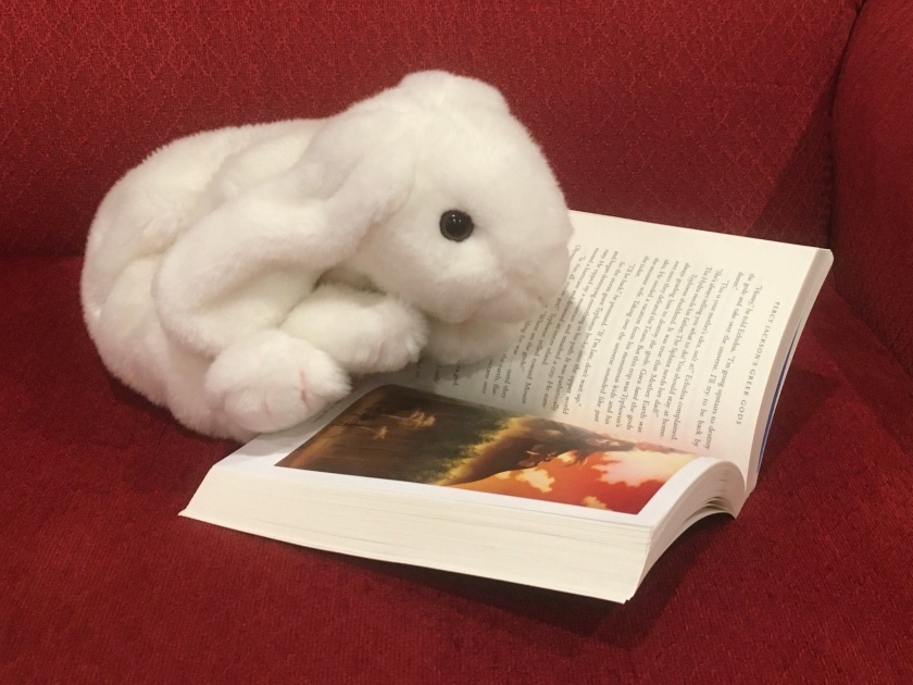Marshmallow is reading Percy Jackson's Greek Gods by Rick Riordan. She is at the beginning of the full-color insert of artwork by John Rocco.