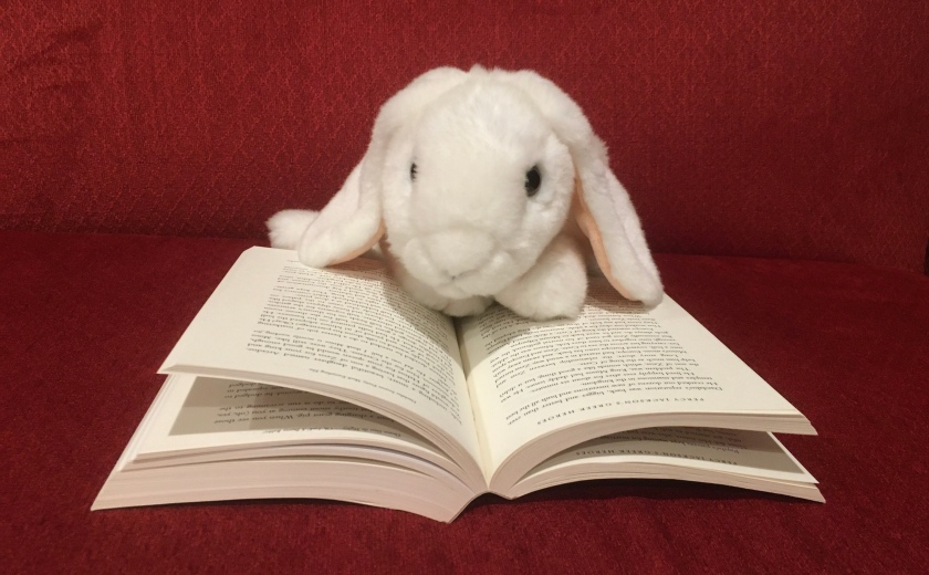Marshmallow is reading Percy Jackson's Greek Heroes by Rick Riordan.
