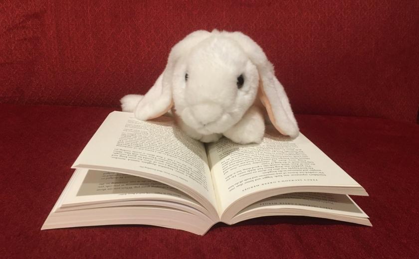 Marshmallow is reading Percy Jackson's Greek Heroes by Rick Riordan.