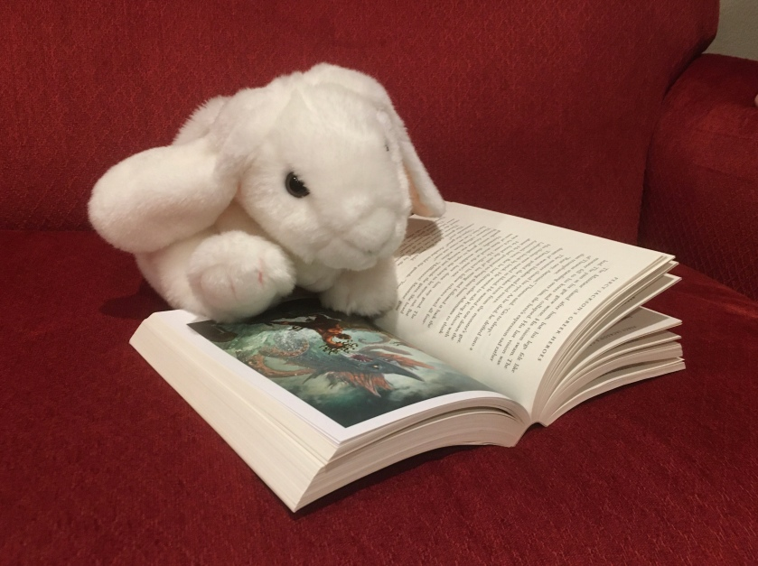 Marshmallow is looking at the colorful insert in Percy Jackson's Greek Heroes by Rick Riordan. The first page displays artwork by John Rocco of Perseus defeating a monster.