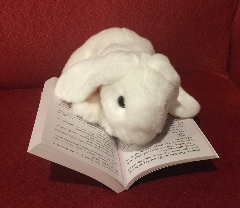 Marshmallow is reading When You Reach Me by Rebecca Stead.