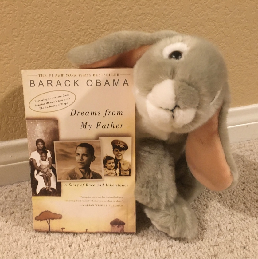 After spending all this time reading about books about president Barack Obama written for younger audiences, Sprinkles proposes that you also consider Obama's own book Dreams From My Father as a possible next step.