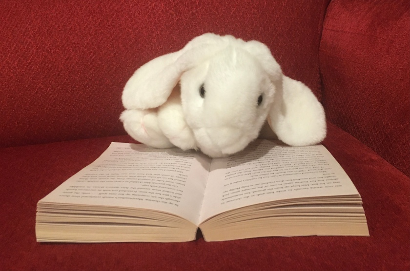 Marshmallow is reading Half Upon A Time by James Riley.