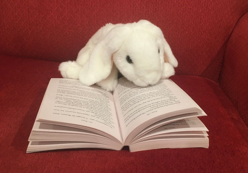 Marshmallow is reading The Blood of Olympus (Book 5 of the Heroes of Olympus Series) by Rick Riordan.