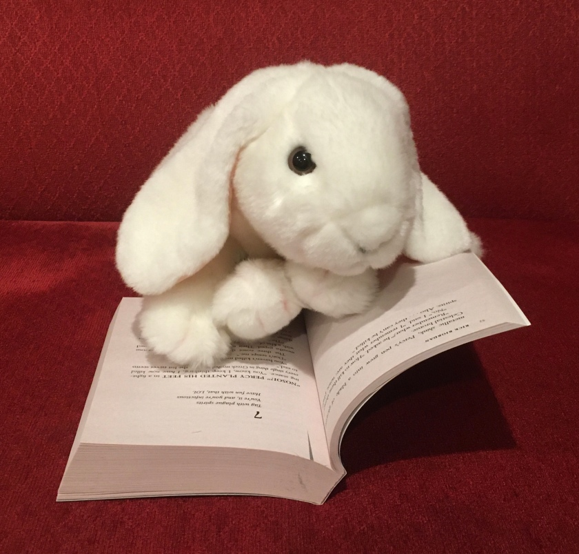 Marshmallow is reading The Hidden Oracle (Book 1 of the Trials of Apollo Series) by Rick Riordan. Here she is showing us how each chapter starts with a haiku.