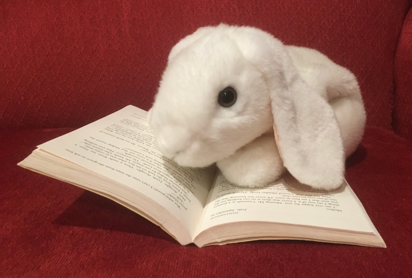 Marshmallow is reading Ella Minnow Pea by Mark Dunn.