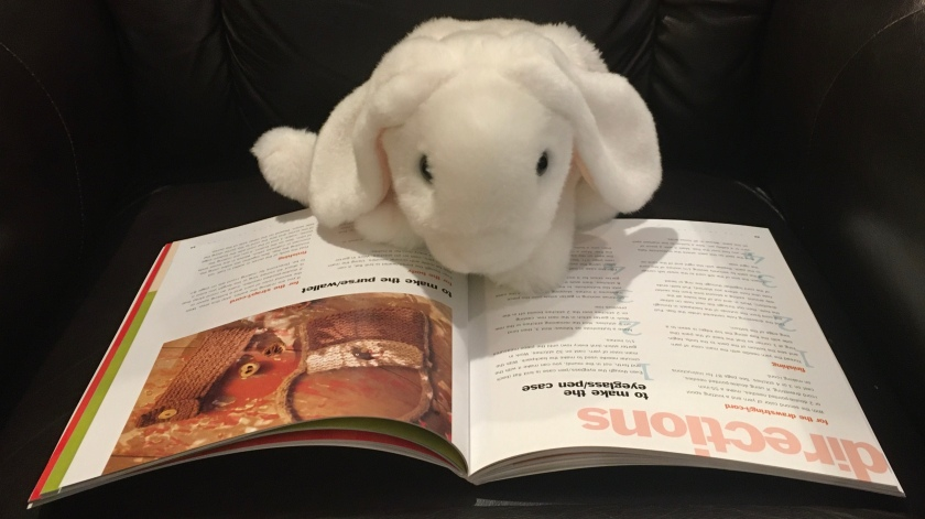 Marshmallow is reading Kids Knitting: Projects for Kids of All Ages, by Melanie Falick. Here she is looking at the directions to make a pen case.