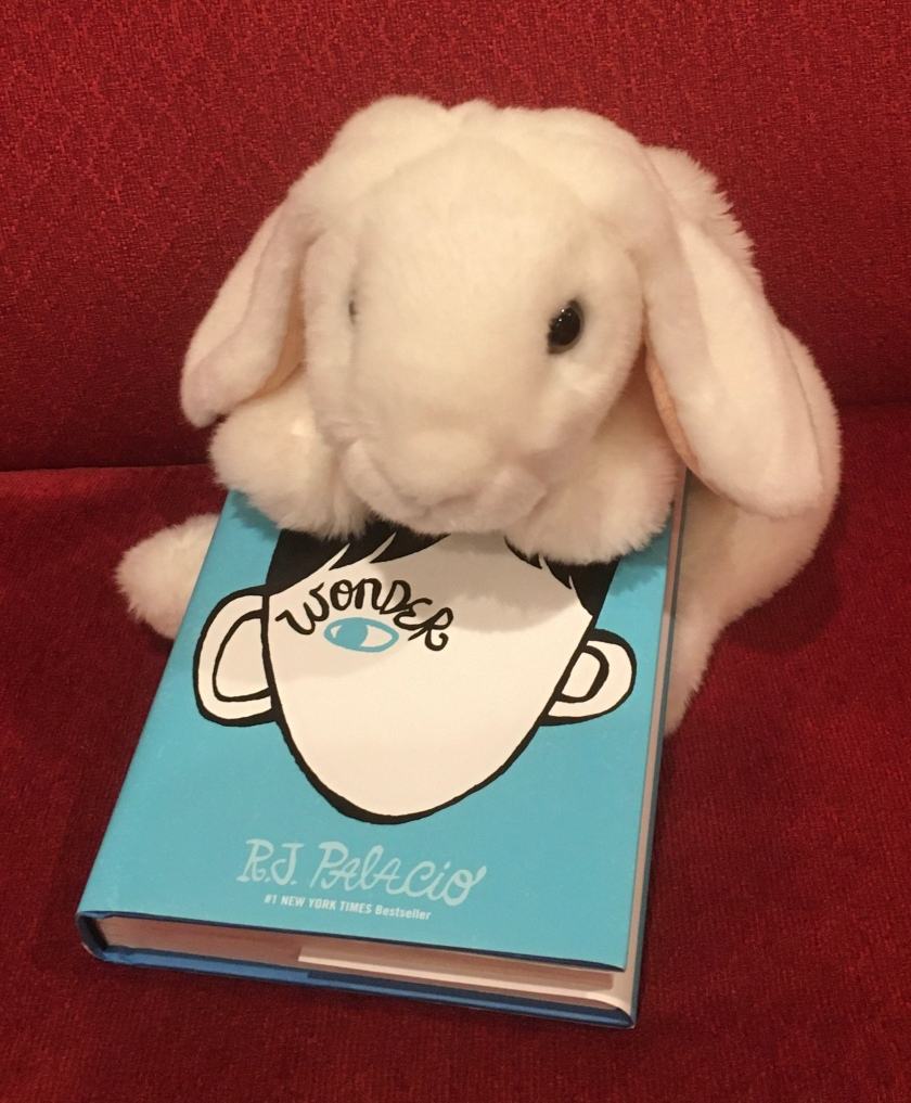 Marshmallow rates Wonder by R.J. Palacio 100%.