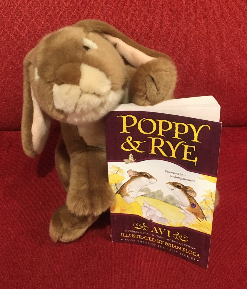 Caramel enjoyed reading Poppy and Rye, written by Avi and illustrated by Brian Floca, and is looking forward to reading more adventures of these lovable animals from Dimwood Forest.