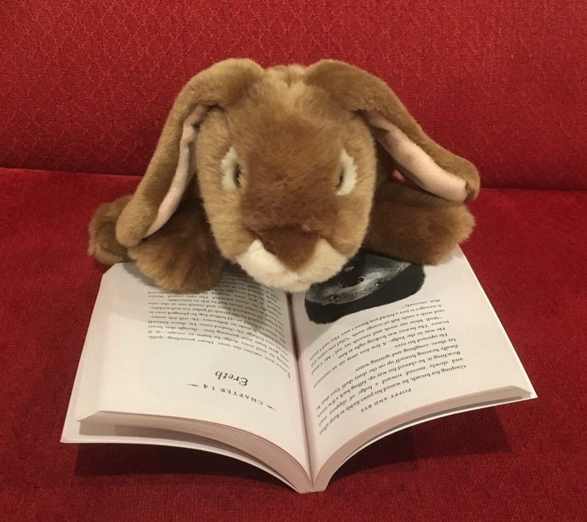 Caramel is reading Poppy and Rye, written by Avi and illustrated by Brian Floca.