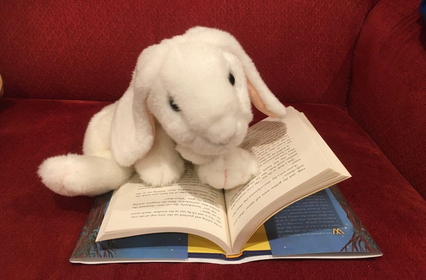 Marshmallow is reading The Clockwork Crow by Catherine Fisher.