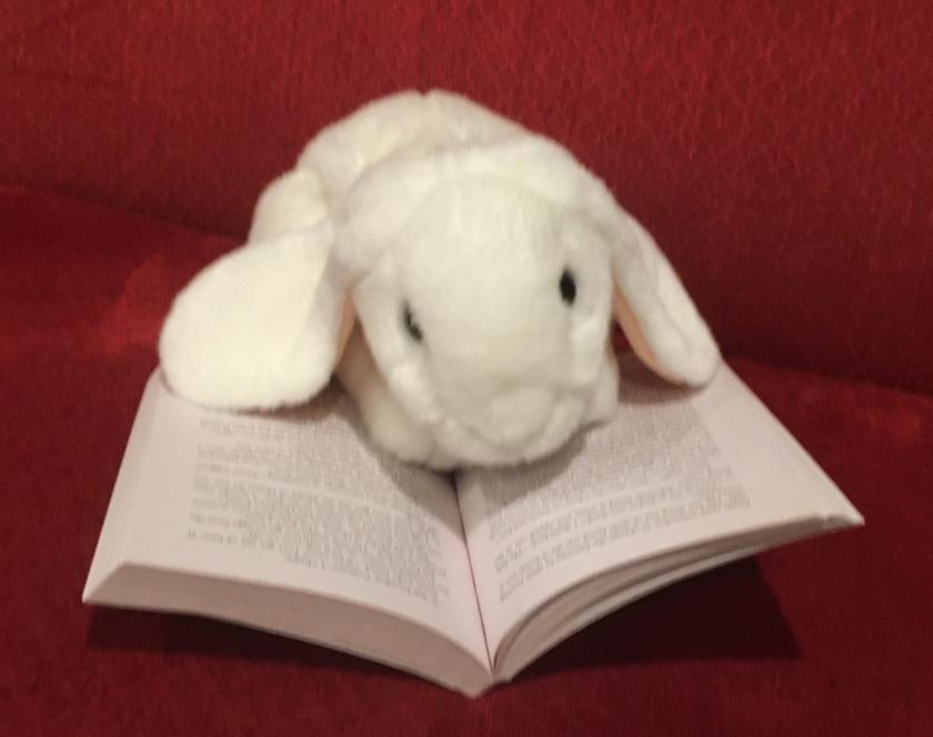 Marshmallow is reading Restart by Gordon Korman.