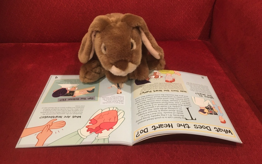 Caramel is reading about the heart in The Science of Scabs and Pus: The Sticky Truth About Blood by Ian Graham.