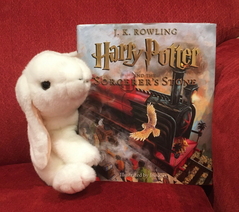 Marshmallow reviews Harry Potter and the Sorcerer's Stone, written by J.K. Rowling and illustrated by Jim Kay.
